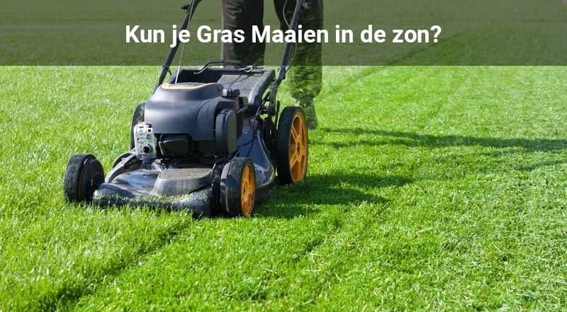 gras maaien in de zon