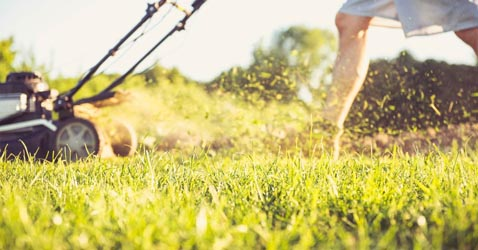 grasmaaien als de zon schijnt