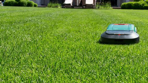 robotmaaier groen gras