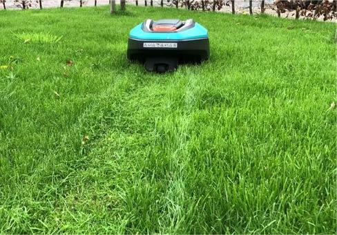 robotmaaier in gras